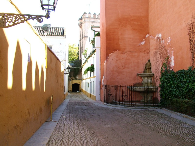 fotos_jardines_murillo_santa_cruz1001