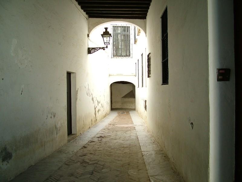 fotos_jardines_murillo_santa_cruz1201