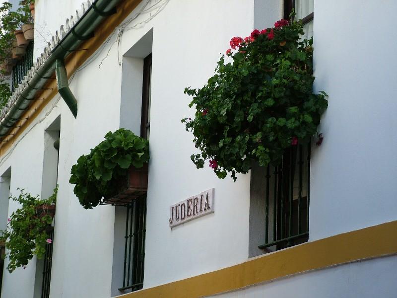 fotos_jardines_murillo_santa_cruz1601
