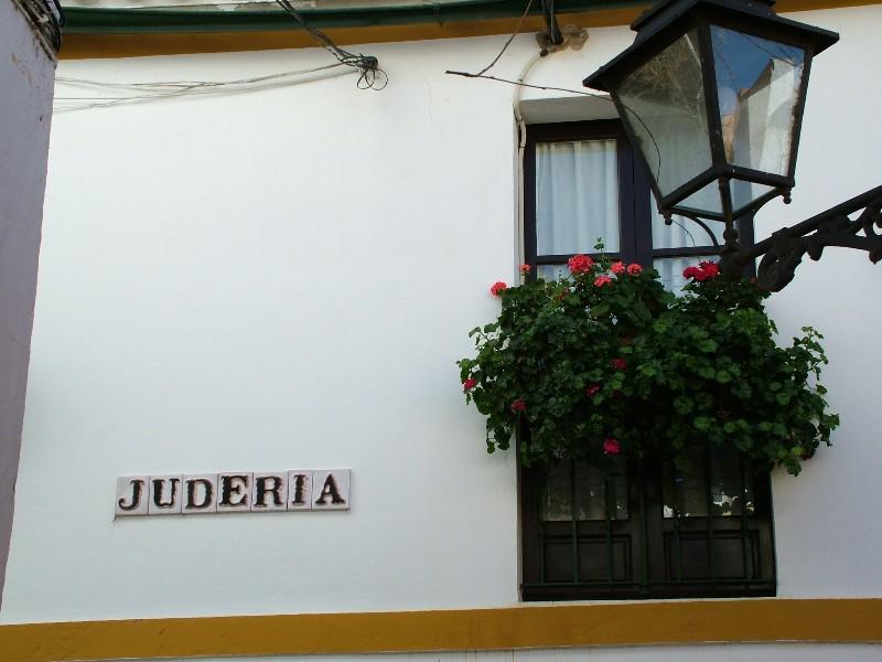 fotos_jardines_murillo_santa_cruz701