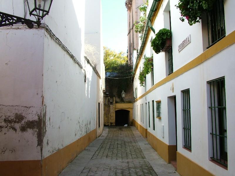 fotos_jardines_murillo_santa_cruz801